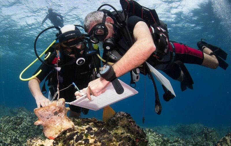 Researchers document a Roman amphora on a reef near the island of Naxos, Greece.