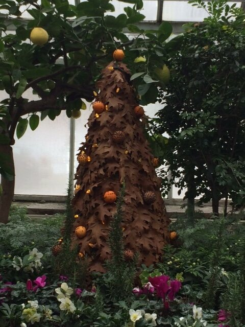 Pomanders hang from this long-lasting tree made from dried leaves.