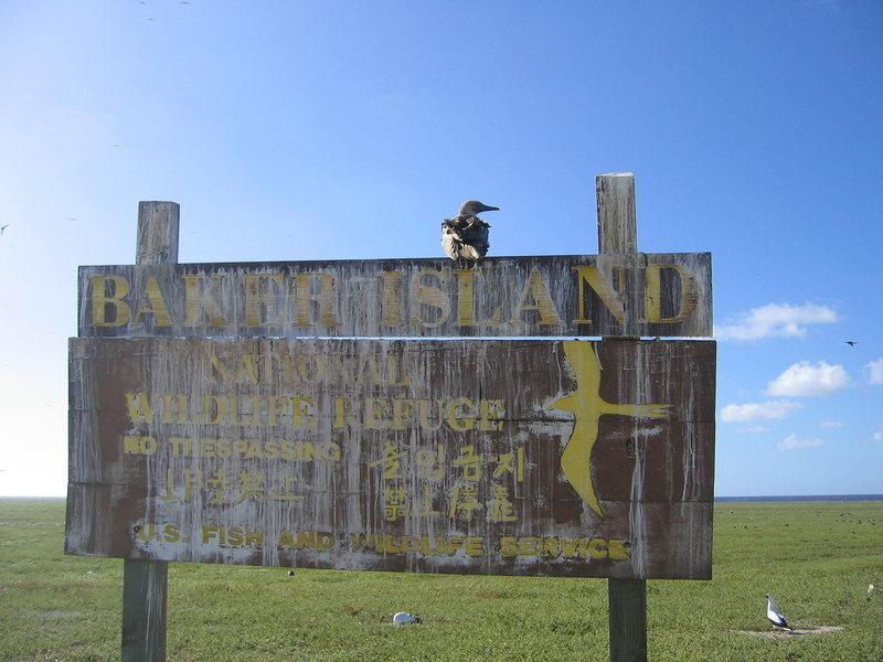 A seabird sits on a Baker Island sign.