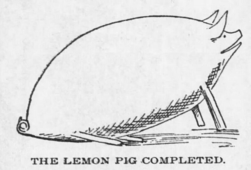 A lemon pig from 1898.