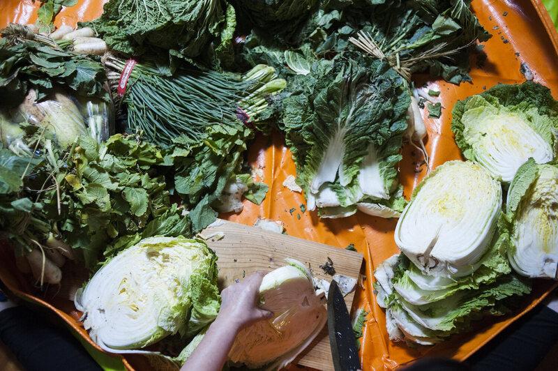 Scallions, daikon, and napa cabbage all make their way into pogi kimchi.