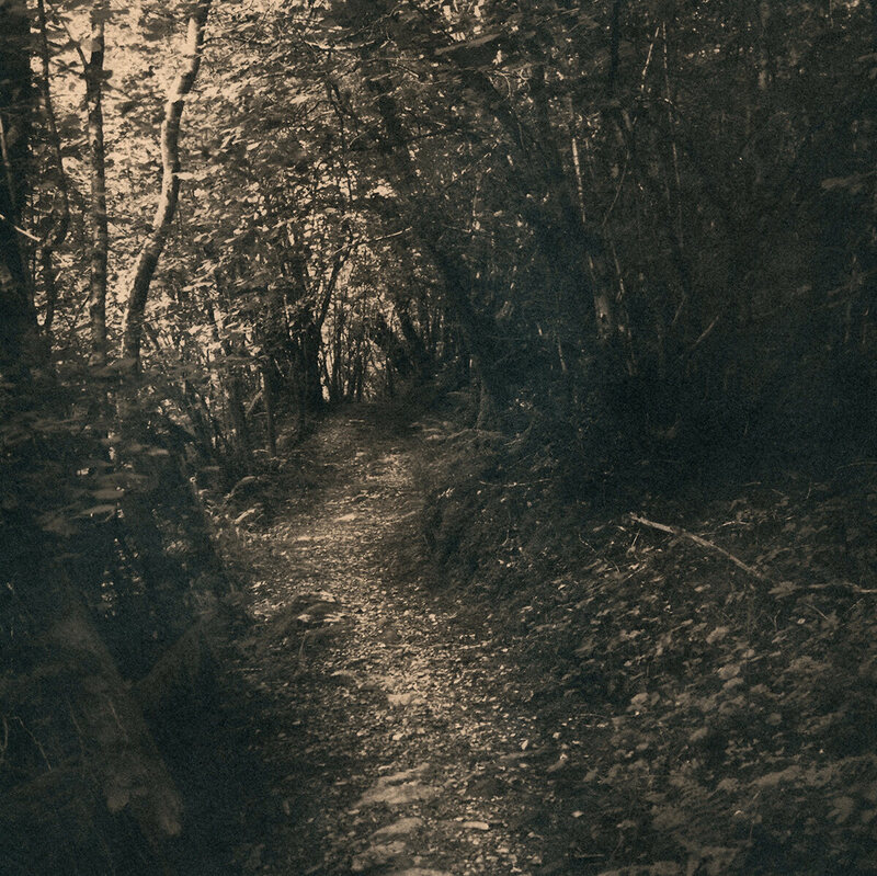 Fowley's Falls Mass Path.