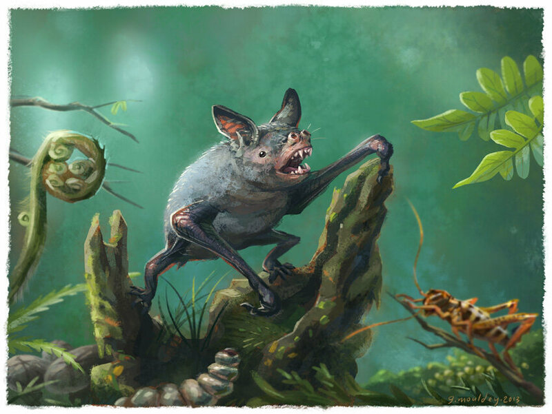 Giant burrowing bat which lived in prehistoric New Zealand discovered