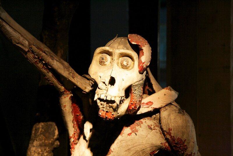The bone and papier-mâché gorilla as it was first found in Paris.