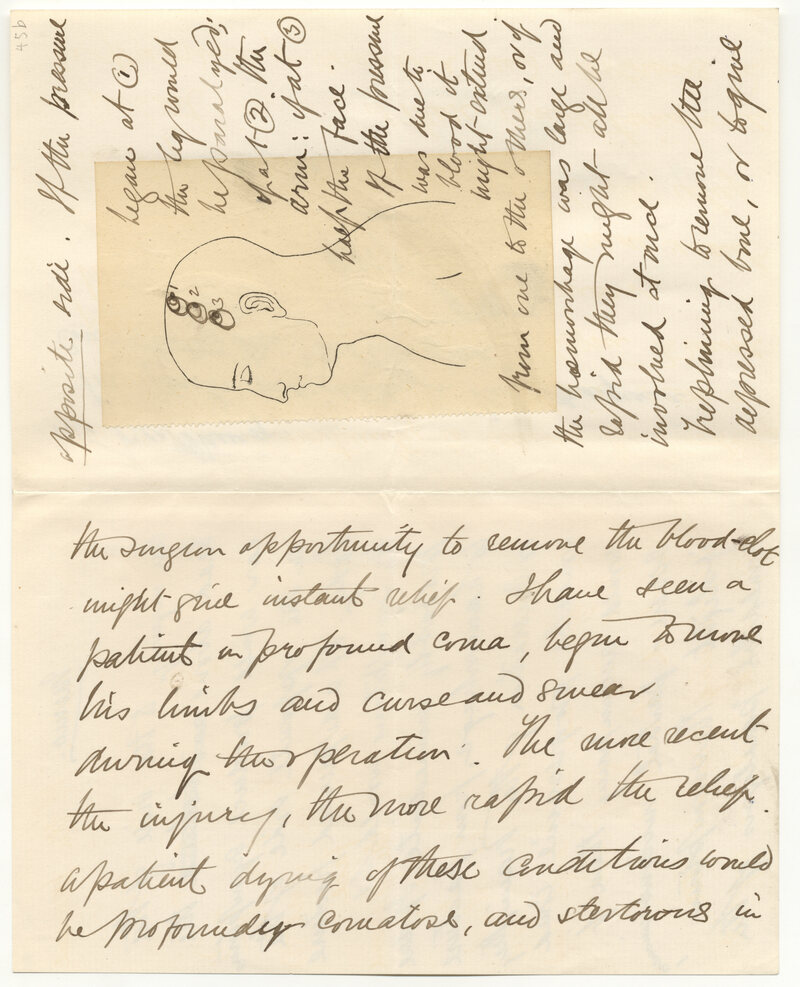 Bram Stoker's notes and outline for Dracula.