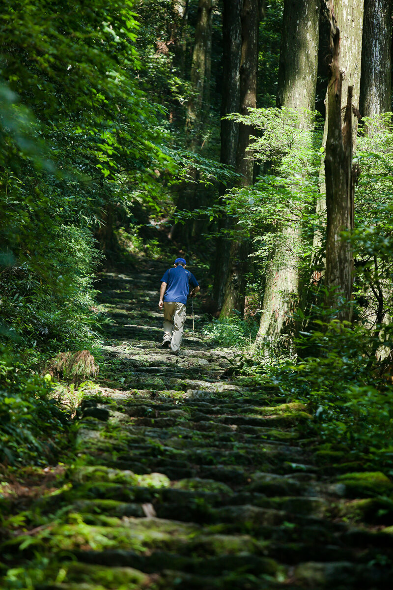 On a steep, shadowed trail within the Kumano Kodo, an elderly man with a walking stick heads up into deeper forest.