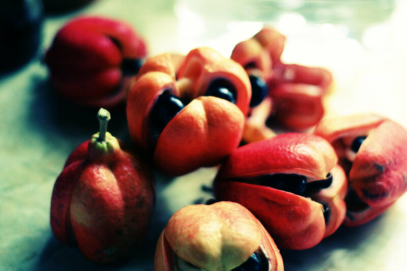 The ackee fruit is savory and poisonous.