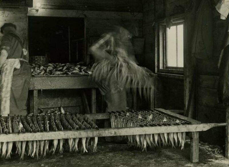 Workers stringing herring in the pickling shed, circa 1964.