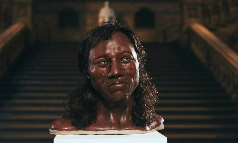 Dutch paleo-artists Alfons and Adrie Kennis reconstructed Cheddar Man's face using a 3D-printer and hi-tech scanner.