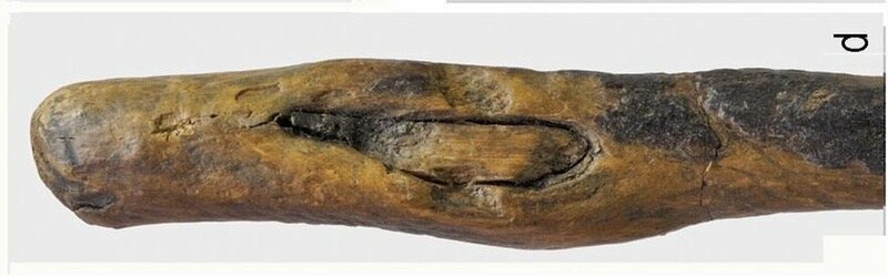 The business end of a 170,000-year-old tool.