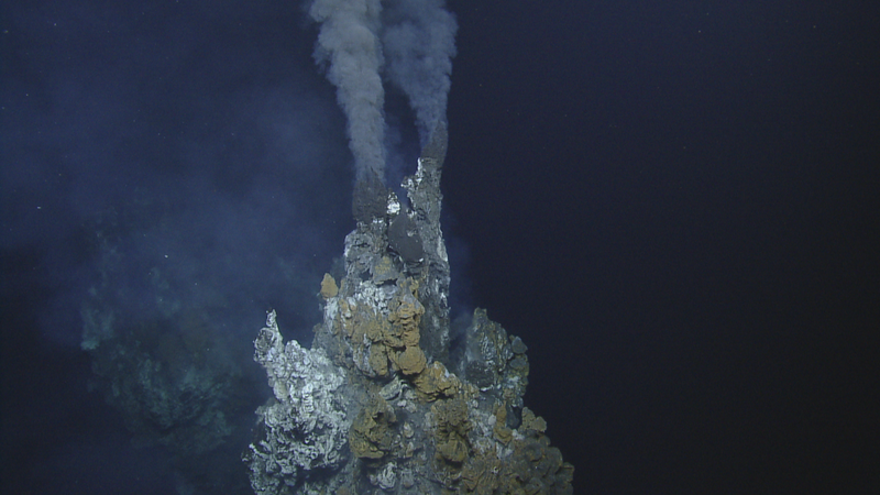 Hydrothermal vents produced super-heated water on the ocean floor.