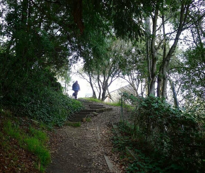 A pedestrian takes advantage of Vistamont Path, one of over 100 such hidden byways in Berkeley, California.