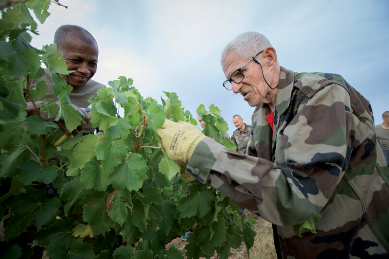The Vineyard Where Retired French Soldiers Make Wine