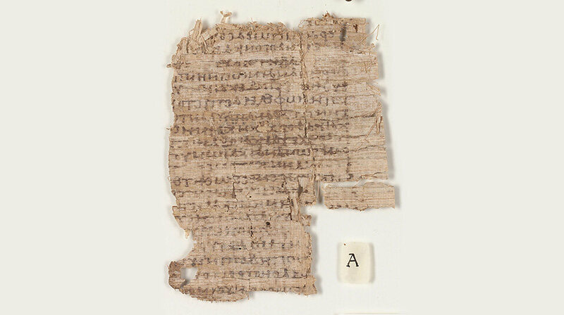 The papyrus before conservation.