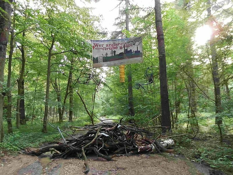 A barricade in Hambach Forest, built by camp members.