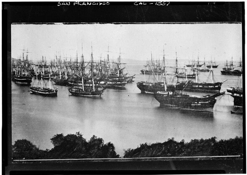 A Century Ago, Wood-Eating Worms Devastated San Francisco Bay