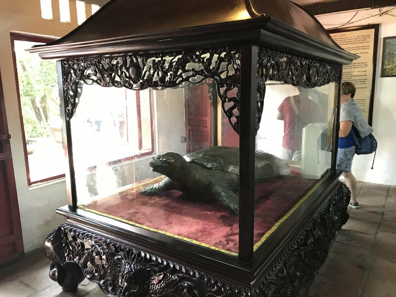 The preserved turtle in Ngọc Sơn Temple.