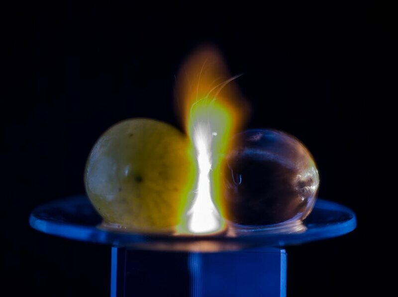 A grape meets a hydrogel bead, and sparks fly.