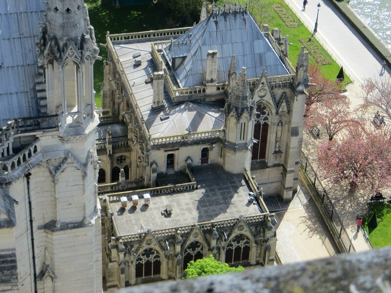 Notre Dame's Bees Seem to Have Survived the Blaze