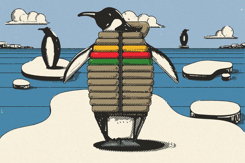 Emperor Penguins Always Wear Warm Coats