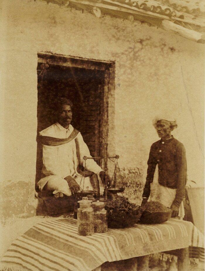 Cannabis shop in Khandesh, India, late-19th century.
