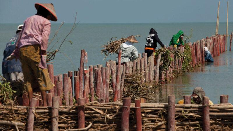 Java Coastal Protection