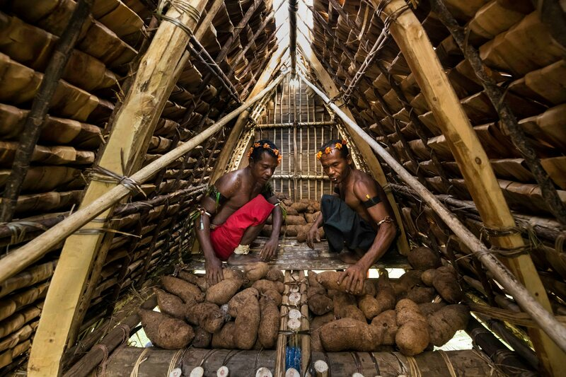 Two men pile tubers in a yam house.