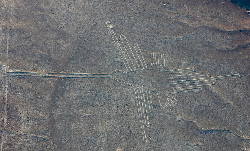 To Decipher Peru's Nazca Lines, Think Like an Ornithologist