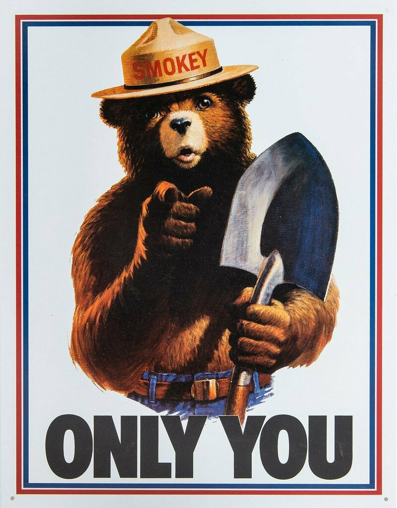 Smokey's slogan portrays forest fires as inherently bad for people and the environment.