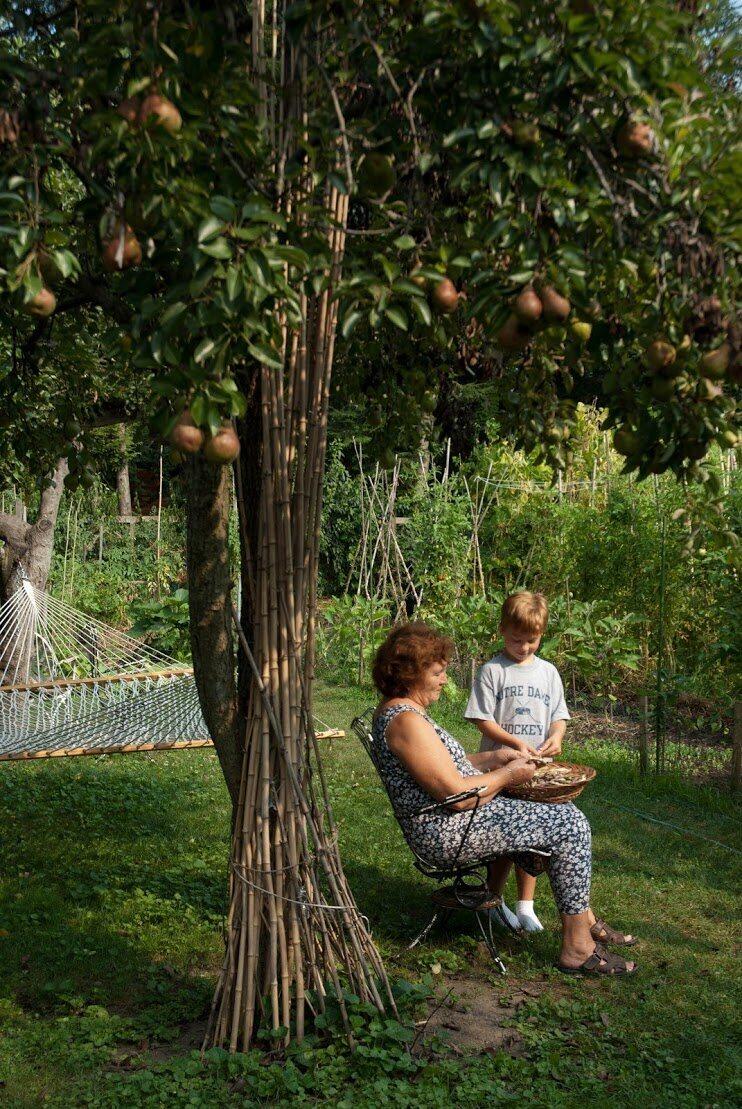 I giardini italo-americani sono uno spazio per l'apprendimento tra generazioni (ph: COURTESY OF MARCY HOLQUIST AND THE ITALIAN GARDEN PROJECT)