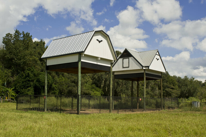 University Of Florida S Bat House And Barn Used With Permission From Museum Natural History Photo By Kristen Grace