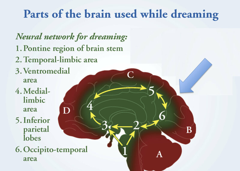 An Attempt At Understanding Dreams