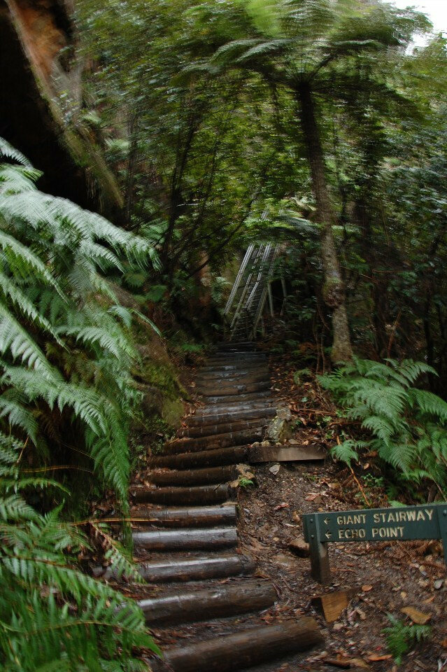 The Giant Stairway