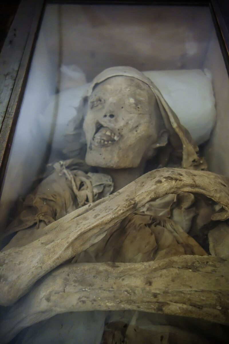 Living Room Library: The Mummies Of Mexico City