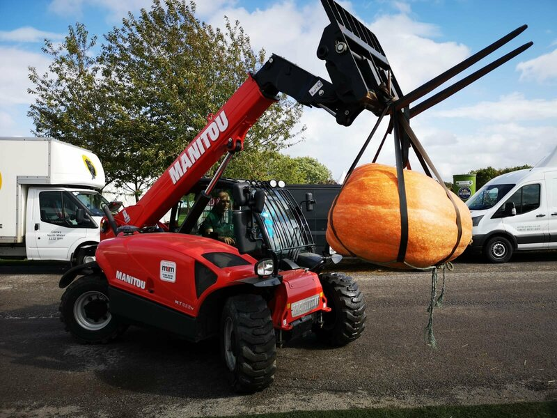 Some competition pumpkins weigh as much a small car.