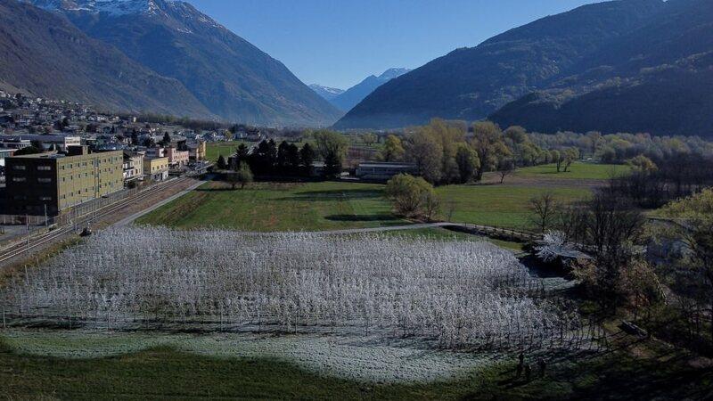 I sistemi di irrigazione hanno bonificato parte dei meleti della regione.