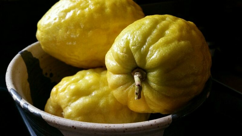 A knobby, thick-skinned fruit, citron is the ancestor of many of the citrus fruits we enjoy today. You can order them candied online, or substitute lemon, lime, or mixed candied fruit.