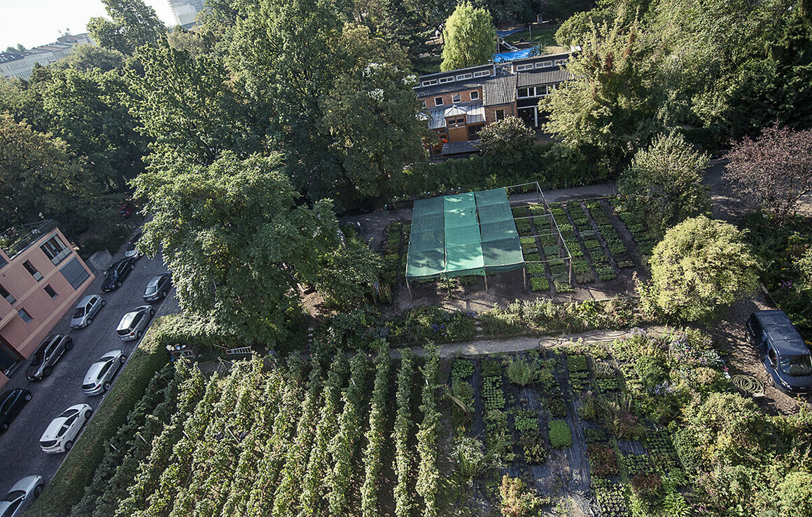 The Kreuzberg vineyard is smacked in the heart of Kreuzberg - Berlin's hippest district.