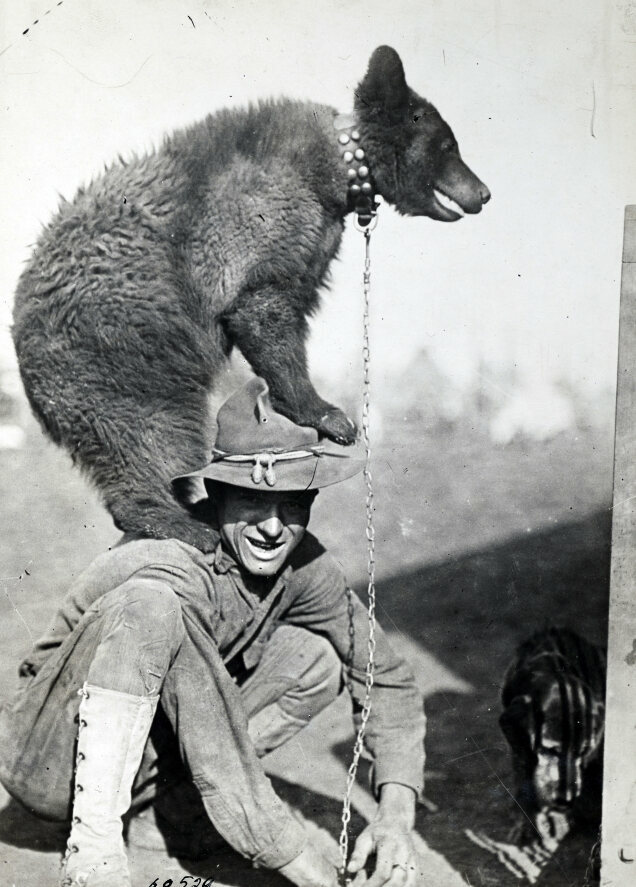 A bear mascot climbs up on the shoulders of a soldier.