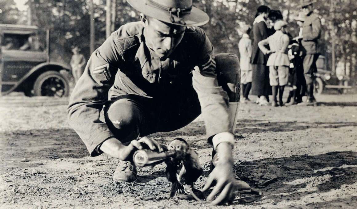 A solider feeds a monkey of one of the Field Artillery Batteries at Camp Wadsworth in Spartansburg, South Carolina.
