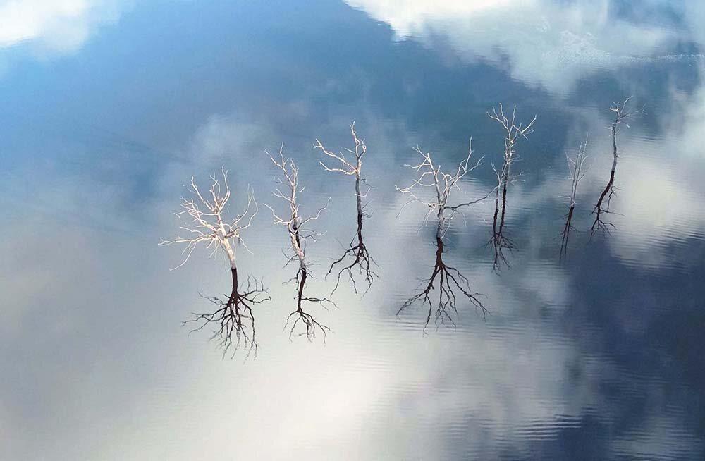 Lake Guerlédan, France, by Nicolas Charles. Latitude 48.2097, Longitude -3.0844, Altitude 98 ft.