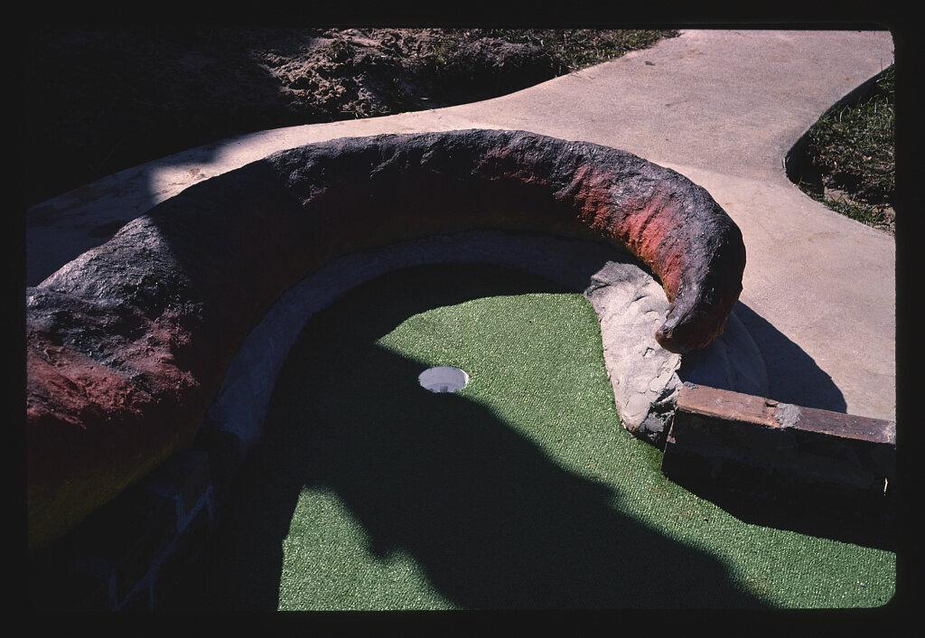 <em>Dinosaur tail, Rainbow Falls Golf</em>, South Carolina, 1988.