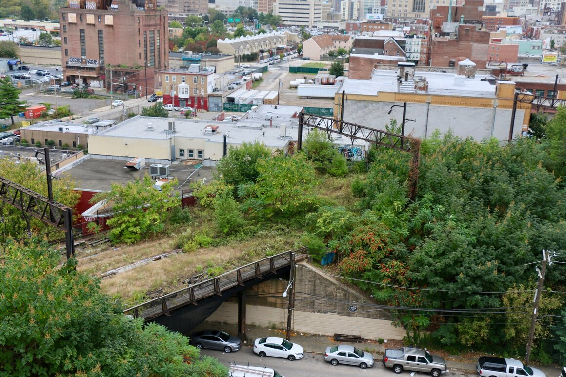 A wild section of the Rail Park.