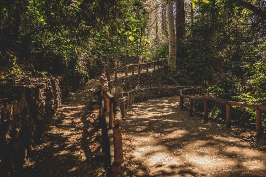 Handrails and stone walls in Fern Dell.