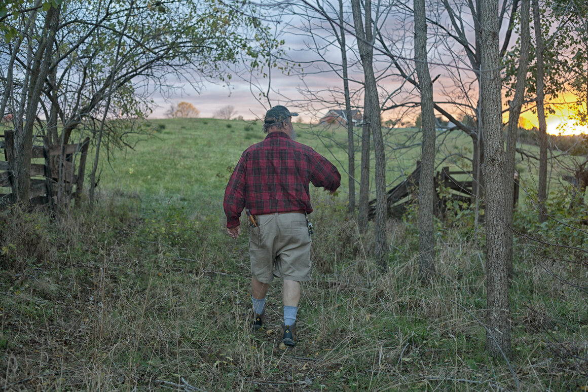 Jay Marion strolls into a familiar Virginia field in search of wild edibles.