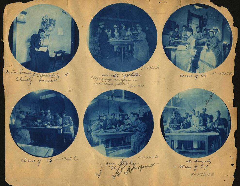 Alice Evan's scrapbook with dissection images, c. 1898.
