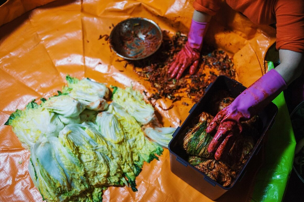 Salted napa cabbage is peeled apart, leaf by leaf, and each crevice stuffed with the paste and daikon mixture.