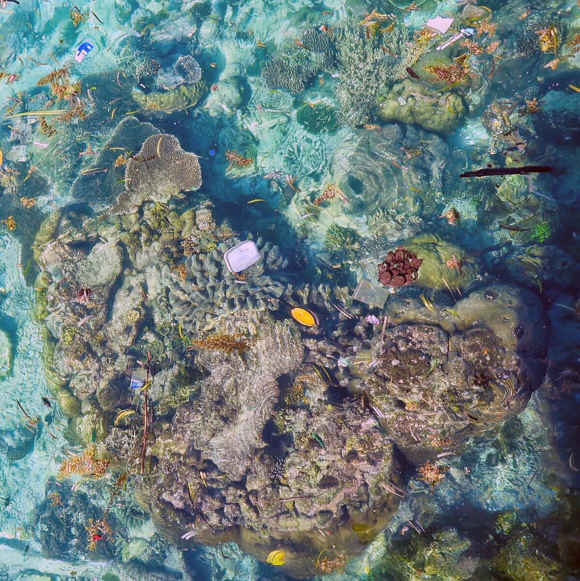 An aerial view highlights the plastic dotting reefs.