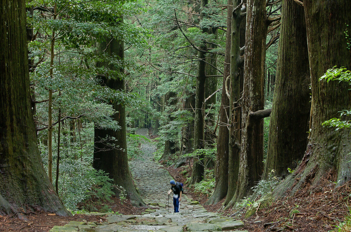 Daimonzaka, the cobblestone path that gradually rises from the coastal valley up to the Kumano Nachi Taisha shrine complex, is 600 meters long (1969 feet), with 267 stairs.