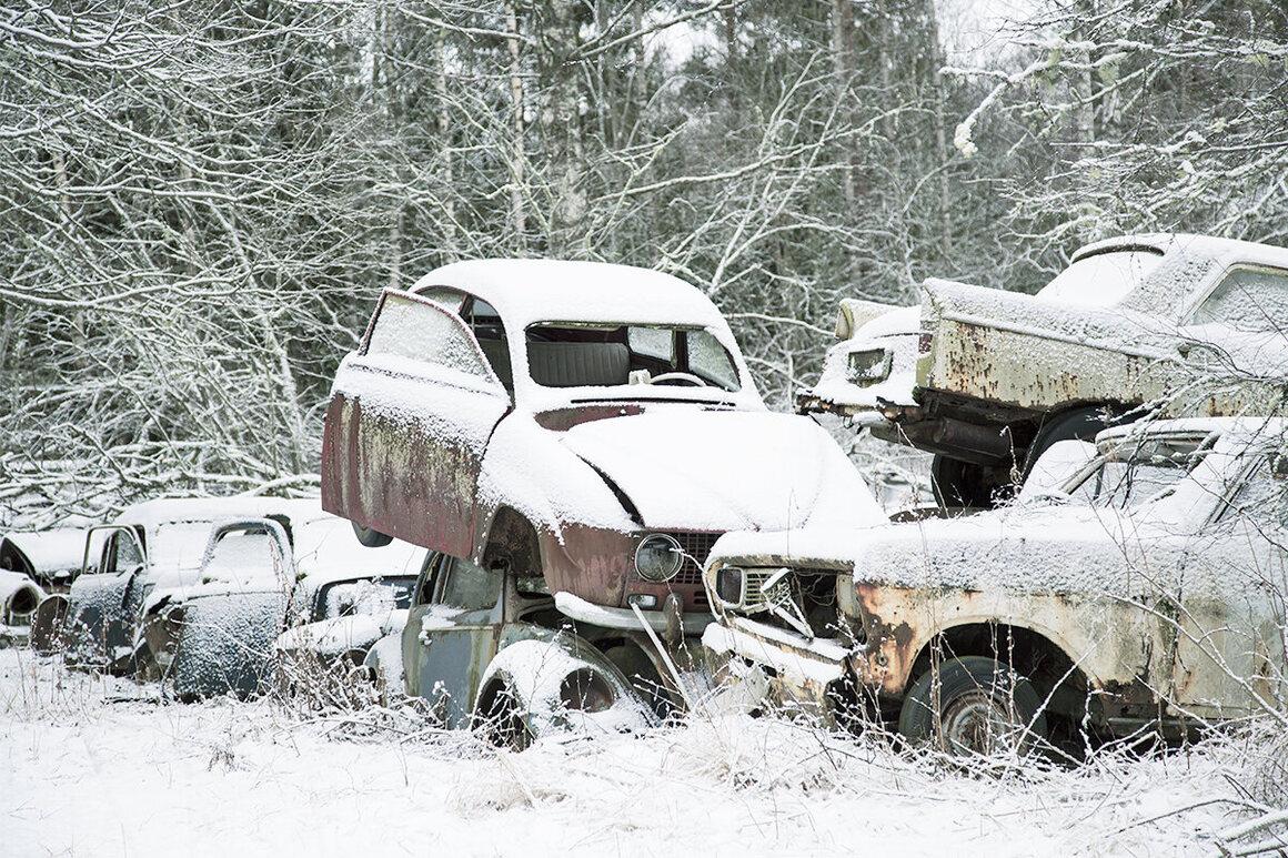 A car graveyard, Sweden.